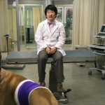 "Animal Practice (NBC) ""Dr. Yamamazing"" Episode 4 (10)"