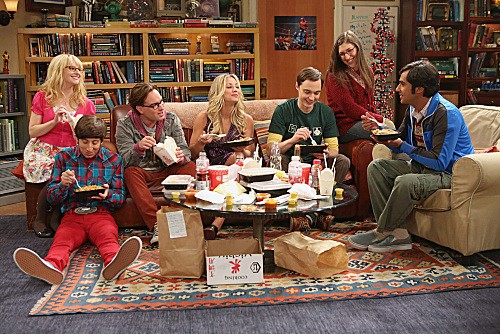The Big Bang Theory Season 6 Episode 4 The Re-Entry Minimization