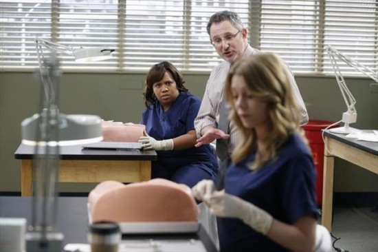 Grey's Anatomy Season 9 Episode 13 Bad Blood (5)