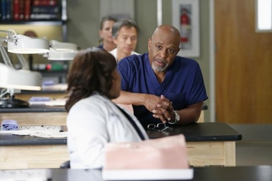 Grey's Anatomy Season 9 Episode 13 Bad Blood (6)
