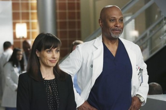 Grey's Anatomy Season 9 Episode 15 Hard Bargain (9)