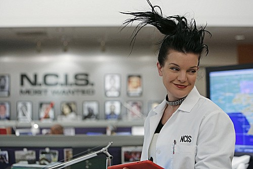 "NCIS Season 10 Episode 14 ""Canary"""