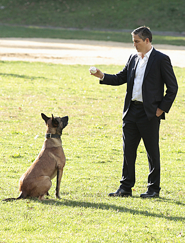 Bear and Reese - Person of interest