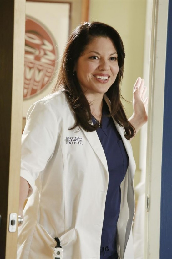 Grey's Anatomy Season 9 Episode 22 Do You Believe In Magic (6)