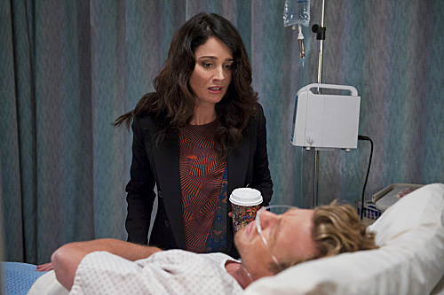 """The Mentalist Season 6 Episode 7 """"The Great Red Dragon""""   TV"""